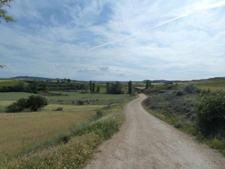 El camino cerca de Logroño